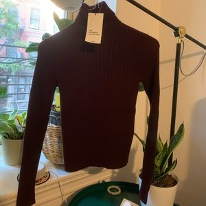 NWT Burgundy Zara Knit Turtleneck